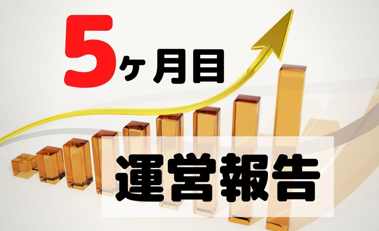【ブログ運営報告】5ヶ月目のPV(アクセス数)と収益を公開