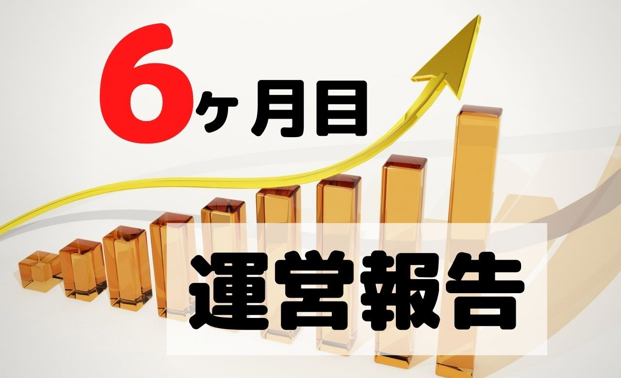 【ブログ運営報告】6ヶ月目のPV(アクセス数)と収益を公開