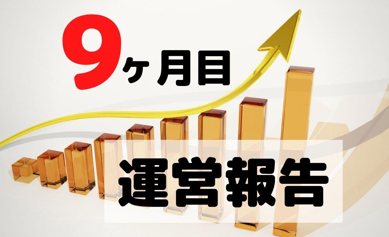 【ブログ運営報告】9ヶ月目のPV(アクセス数)と収益を公開