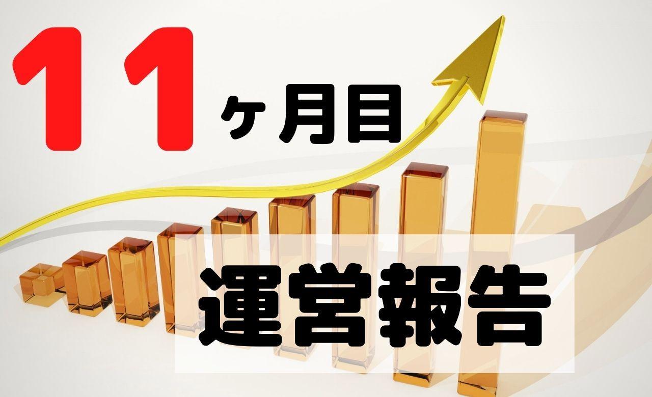 【ブログ運営報告】11ヶ月目のPV(アクセス数)と収益を公開